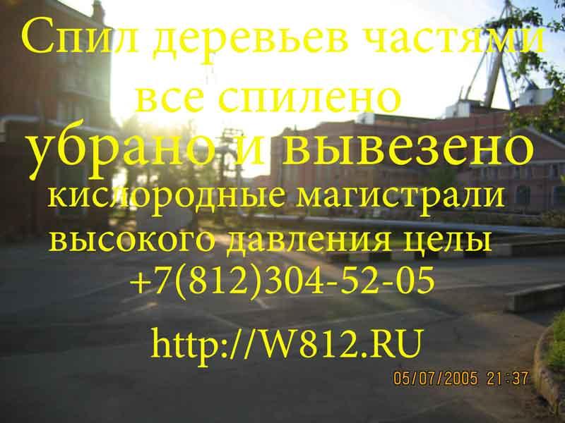 304 52 05 удаление обрезка леса частями
